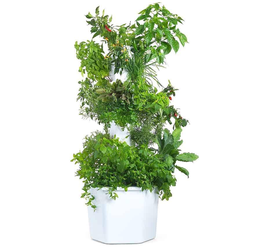 Aerospring Plant