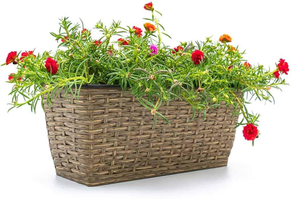 CATLEZA Medium Wicker Rectangle Planter Pot