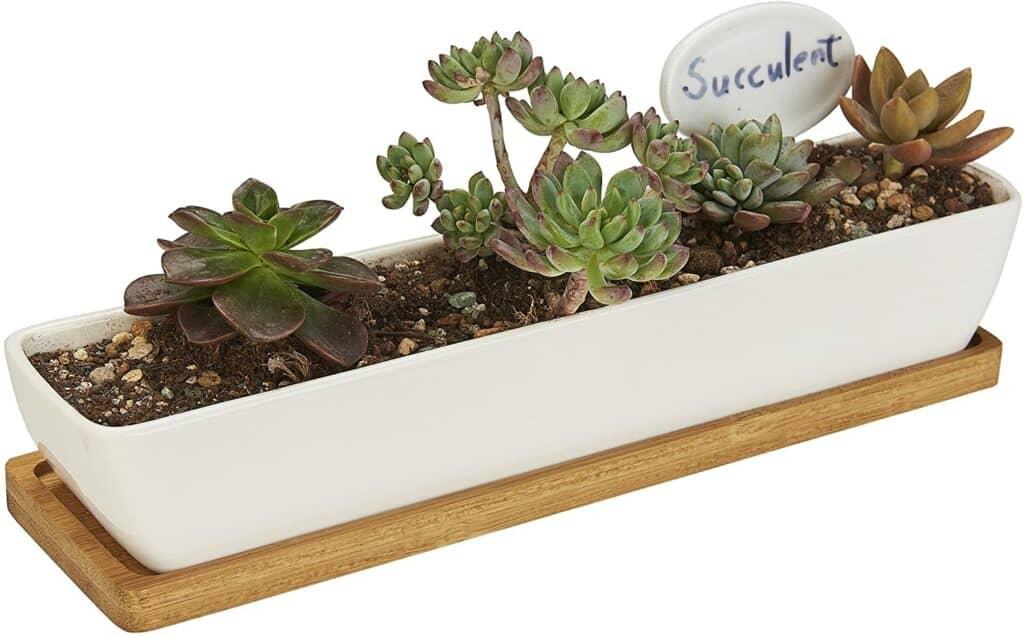 FLOWERPLUS Planter Pot