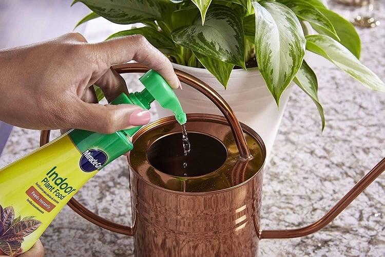 Miracle-Gro Indoor Plant Food