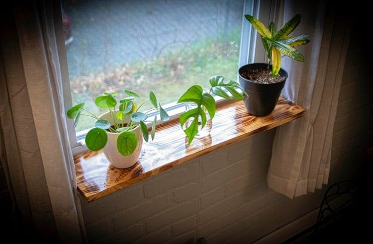 Most Versatile Window Sill Shelf