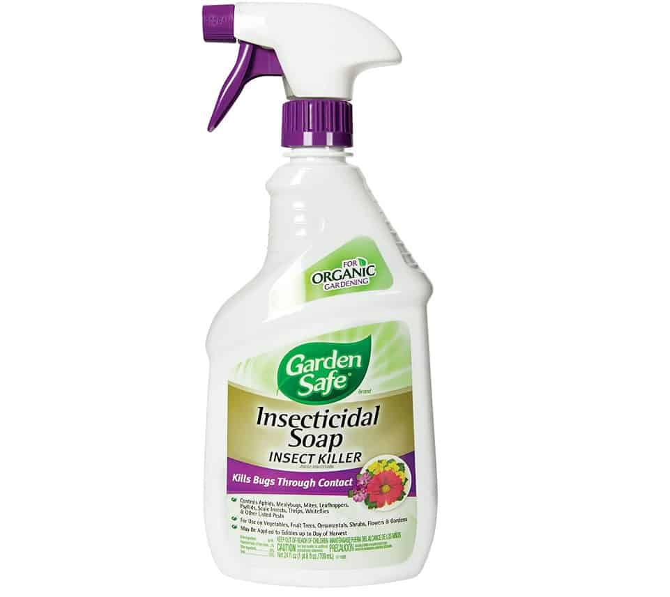 Soap Insect Killer